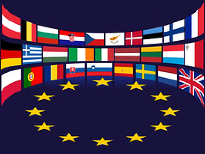 AMC EU flags