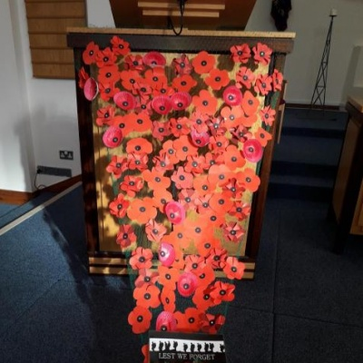 AMC Rembrance poppies